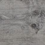 Maritime Pine 24943